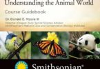 Zoology Understanding the Animal World PDF