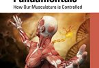 Neuromuscular Fundamentals How Our Musculature is Controlled PDF