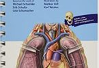 Anatomy in Your Pocket 1st Edition PDF